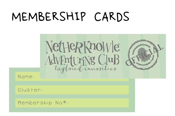 MEM CARDS SET