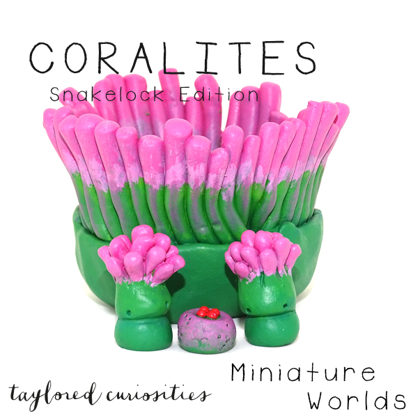 coralites taylored curiosities designer toy art toy artdoll dollhouse miniature snakelock anemone pink green sea marine eggs handmade copyright 4
