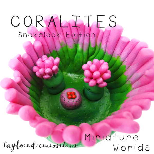 coralites taylored curiosities designer toy art toy artdoll dollhouse miniature snakelock anemone pink green sea marine eggs handmade copyright 6